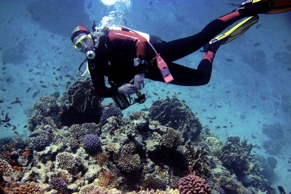 Iran Diving and Snorkeling Tour